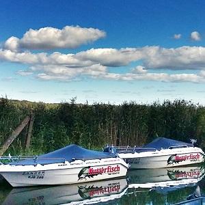 Galia 440 Open Kutterfisch Mietboote