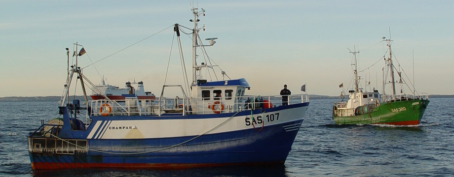 Kutter- und Küstenfisch Insel Rügen